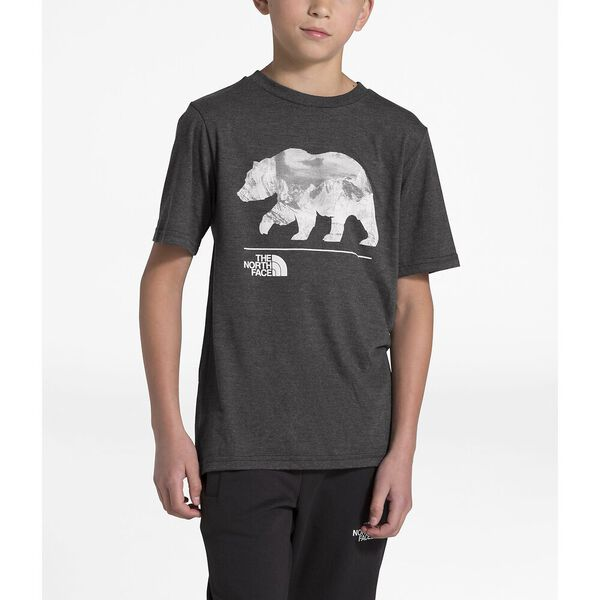 Boys' Short-Sleeve Tri-Blend Tee, TNF DARK GREY HEATHER, hi-res