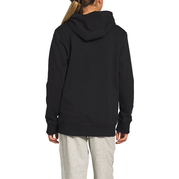 Youth Logowear Pullover Hoodie, TNF BLACK, hi-res