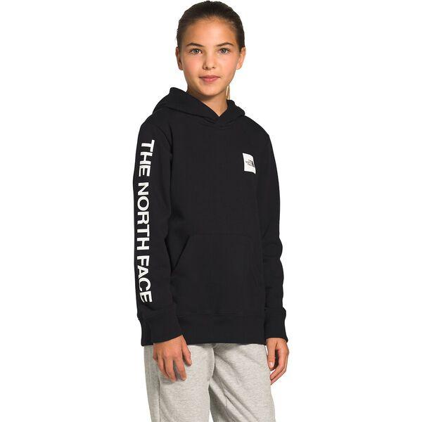Youth Logowear Pullover Hoodie, TNF BLACK, hi-res
