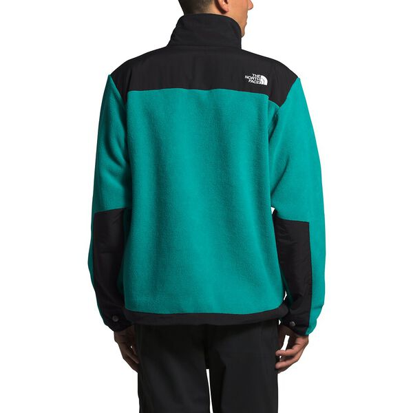 Men's '95 Retro Denali Jacket, JAIDEN GREEN, hi-res