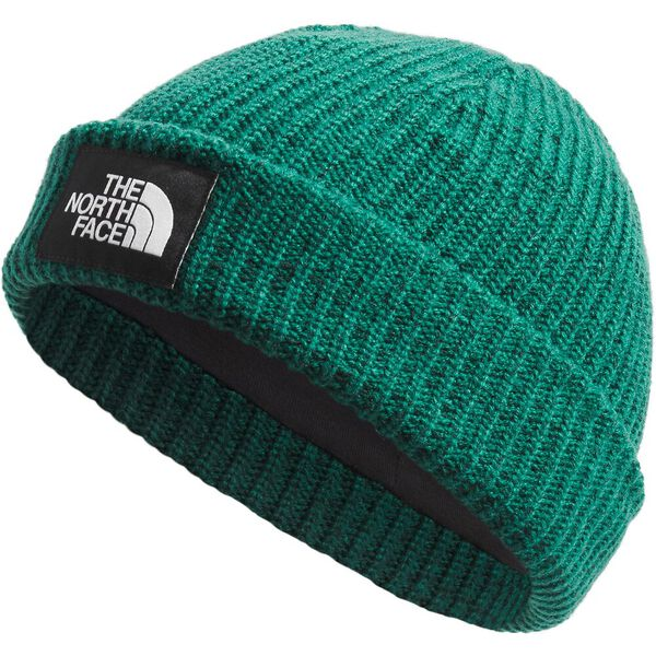 Salty Dog Beanie, EVERGREEN, hi-res